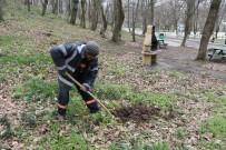 ORMAN MÜDÜRLÜĞÜ - Akyazı Orman Park Meyve Ağaçları İle Donatıldı