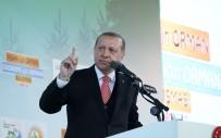 ORMAN VE SU İŞLERİ BAKANLIĞI - Cumhurbaşkanı Erdoğan Açıklaması 'Bunun Yalanlarının Freni Yok'