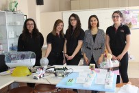 DAMACANA - Kullanılmayan Kağıt Ve Plastiklerden Ambulans Tasarladılar
