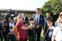 SOKAK HAYVANI - Osmangazi Belediyesi 2 Ayda 926 Hayvana Sahip Çıktı