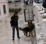 Sivas'ta Baharın Müjdesi 'Nevruz Bayramı' Soğuk Ve Hafif Kar Yağışlı Havada Kutlandı.