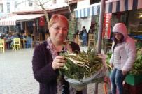 BOĞMACA - Urla'daki Ot Festivali İçin Hazırlıklar Tamam