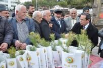 YOZGAT - Yozgat'ta 5 Bin Fidan Dağıtımı Yapıldı
