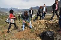 Anamur'da Nevruz Ve Ormancılık Günü Fidan Dikilerek Kutlandı