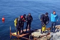 GÜLCEMAL FIDAN - Denizden Çıkanlar Şok Etti