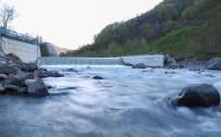 Yürük Açıklaması 'Ordu Su Zengini Değil'