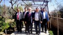 ESNAF VE SANATKARLAR ODASı - AK Parti'li Berber'den Üzüm Üreticilerini Rusya Bilgisi
