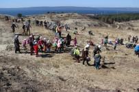 DÜŞÜNÜR - Çanakkale'de '15 Temmuz Demokrasi Şehitleri Hatıra Ormanı' Oluşturuldu