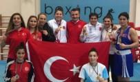 BOKS - Kadın Boksörler Bakü'de Fırtına Gibi Esti