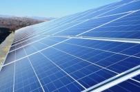 KONYA KARAPINAR - Kayısı Bahçeleri Güneş Enerji Tarlaları İçin Kiraya Veriliyor