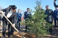 Krıklaereli'de Polis Hatıra Ormanı'na 250 Fidan Dikildi