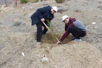 SOSYAL SORUMLULUK - Öğrenciler Yüzlerce Fidanı Toprakla Buluşturdu