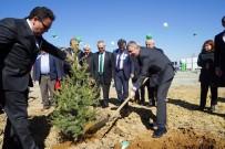 GÜNEŞ ENERJİSİ - Orman Haftası Ve Ağaç Bayramı, Kastamonu'da Kutlandı