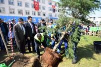 BASKETBOL - Osmangazi'de Okul Bahçeleri Yeşilleniyor