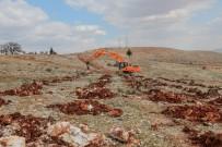 ORMANA - Şehitkamil'de Bi Dünya Yeşil Orman Kuruluyor