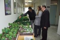 METEOROLOJI - Düzce Üniversitesinde Doğa Ve Bilim Sergisi