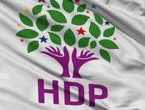 HDP Bingöl eş başkanları tutuklandı