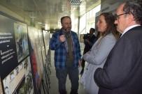 BOTANİK BAHÇESİ - 'İstanbul'da Bahçe Ve Çiçek Sergisi' Sanatseverlerin Ziyaretine Açıldı