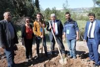 ADıYAMAN ÜNIVERSITESI - Kütüphaneler Haftasında 270 Ağaç Dikimi Yapıldı