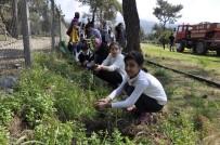 KUZUCULU - Öğrenciler Ağaç Müzesi'ne Fidan Dikti