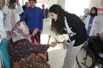 SAĞLIKLI YAŞAM - Tosya Toplum Sağlığı Merkezi Huzurevi Sakinlerinin Yaşlılar Gününü Kutladı