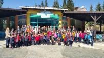 DERNEK BAŞKANI - Yaşlılar Haftasını Birlikte Kutladılar