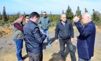 BORU HATTI - Lapseki'de Doğalgaz Çalışmaları Sürüyor