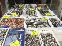 BALIK FİYATLARI - Mevsimin Yenecek Balığı Barbun