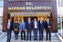 BAKANLIK - Müsteşar Yazıcı Harran'ı Ziyaret Etti
