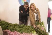 KARANTINA - Urla Ot Festivali Yoğun İlgiyle Başladı