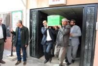 ŞANLIURFA MİLLETVEKİLİ - Abdullah Öcalan'ın ablası öldü
