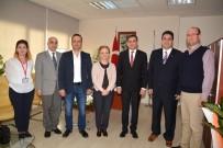ECZACI ODASI - Balcalı'ya 'İlaç Danışma Ve Temin Bürosu' Kuruluyor