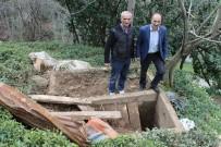 İSMAİL HAKKI - İkizdere'de Ayılar Mezarlara Dadandı