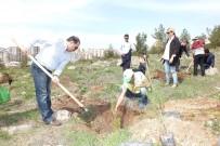 MÜDÜR YARDIMCISI - 15 Temmuz Şehitleri İçin Hatıra Ormanı Oluşturuldu
