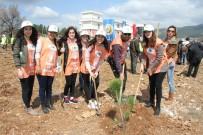 MUĞLA ORMAN BÖLGE MÜDÜRÜ - Muğla'da Ağaç Bayramı Etkinliği