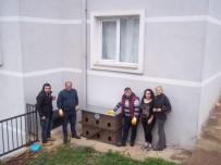 OSMANLı İMPARATORLUĞU - Sokak Hayvanları Barınaklarına Kavuştu