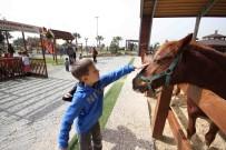 HAYVAN SEVGİSİ - Bahar Tay Park'ta Güzel