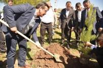 OCAKLAR - Başkan Atilla, 15 Temmuz Şehitleri Anısına Fidan Dikti