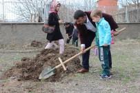 ANADOLU LİSESİ - Elazığ'da Öğrenciler, Fidan Dikti