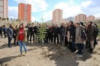 ANADOLU LİSESİ - Melikgazi'de 10Bin 500 Çam Fidanı Toprakla Buluştu