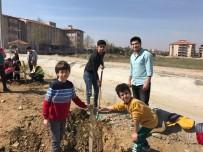 GENÇLİK MERKEZİ - Minikler, Gençlerle Birlikte Fidan Dikti