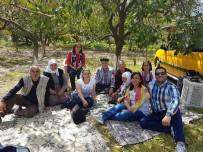 Ortaca'da 'Hayır Gönüllüleri' Referandum Çalışmalarına Devam Ediyor