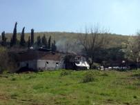 GÖKTEPE - Sakarya'da Yangın Faciası Açıklaması 3 Çocuk Öldü !