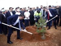 Şehitkamil İlçesinde 'Bi Dünya Yeşil Orman' Projesiyle Yeni Ormanlar Kuruluyor