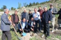 Silifke'de Mali Müşavirler Hatıra Ormanı Oluşturuldu