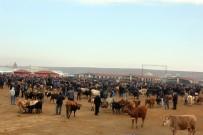 KIRMIZI ET - Ağrı'da Hayvan Üreticilerinden Et Fiyatlarının Düşmesine Tepki