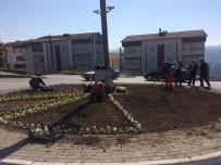 SAĞLIKLI YAŞAM - Alaplı Belediyesi'nden Çalışma Seferberliği