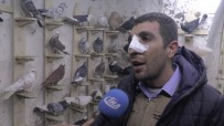AHMET KAYA - Ameliyattan Çıkar Çıkmaz Güvercinlere Koştu
