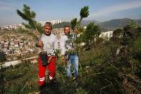KARABAĞ - Bayraklı'da Ağaçlandırma Çalışması