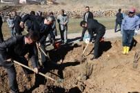FİDAN DİKİM TÖRENİ - Gümüşhane'de 7 Bin Kuşburnu Toprakla Buluştu